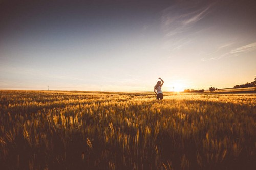 happy-girl-dancing-in-a-wheat-field-on-sunset_free_stock_photos_picjumbo_DSC06756-1080x720.jpg
