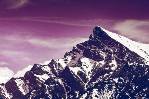 krivan-mountain-violet.jpg